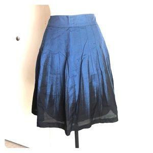 Limited Ombré Skirt